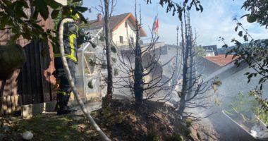 B2: Brand einer Hecke, Gartenhütte