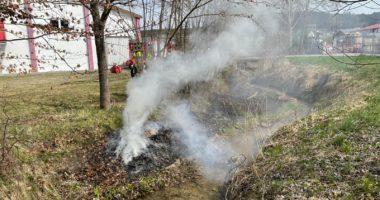 B1 Brand im Freien – Böschungsbrand Geiersthal